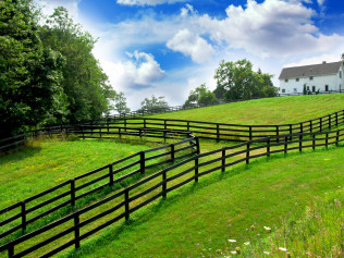 Farm & Agriculture Fencing